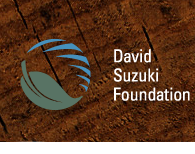 The David Suzuki Foundation website header
