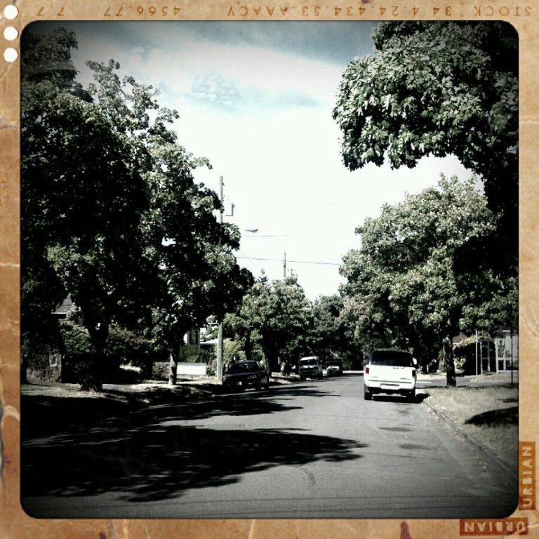 Victoria West neighbourhood in summer