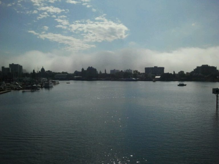 Serious fog bank in Victoria today.