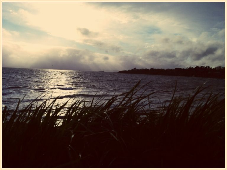 Clover point in the wind