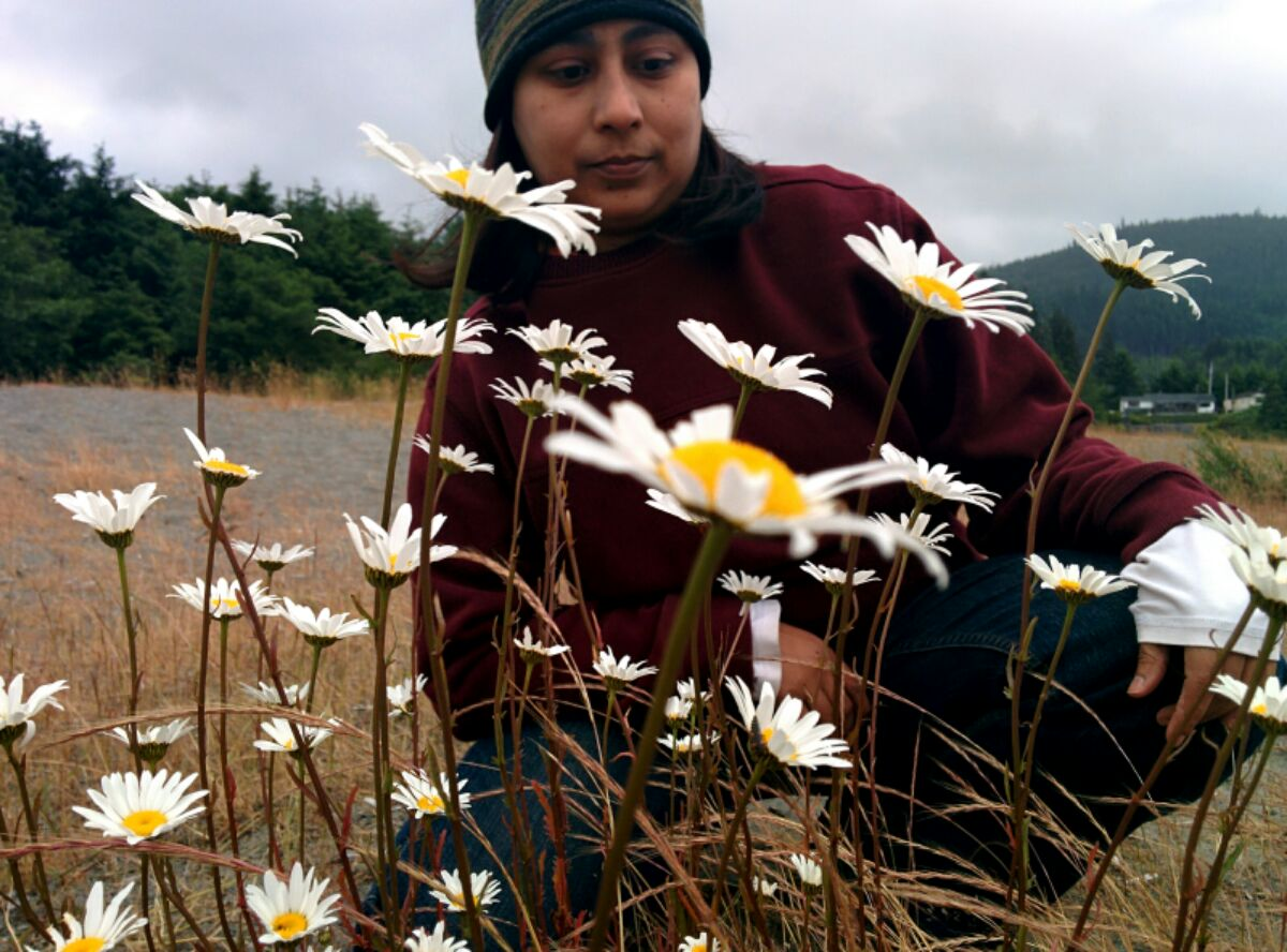 a good friend poses with daisies on rainy camping day on Pacheedaht territory