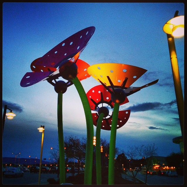 Victoria airport flower sculptures as seen at nighttime.