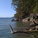 The water is flat on the ocean on Galiano.
