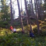 Hikers in the forest on Galiano island.